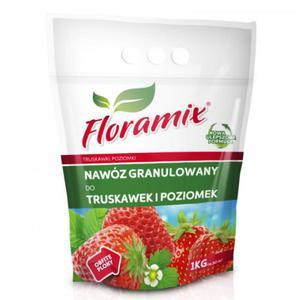 FLORAMIX TRUSKAWKA I POZIOMKA - 2847022411