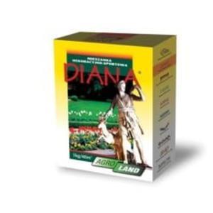 Diana- dekoracja i sport - 2824978075