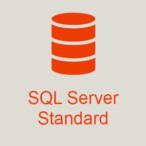 Microsoft SQL Server 2017 Standard + 30 User - 2878551967
