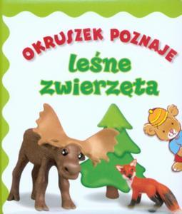 Okruszek poznaje leśne zwierzęta - 2847900901
