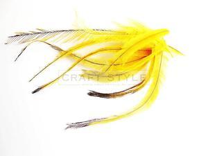EMU pióra 10szt ŻÓŁTE - 2862710971