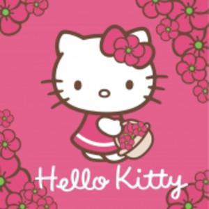 Ręcznik Hello Kitty 30x30 HK01 4710 Detexpol - 2836275589