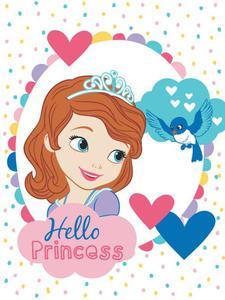 Koc dziecięcy z mikrofibry 75x100 Zosia Princess Sofia STF 01 MB Detexpol - 2836276998