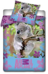 Pościel Animal Planet 160x200 Miś Koala 7020 - 2833878801
