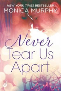 Never Tear Us Apart: Never Series 1 - 2847579886