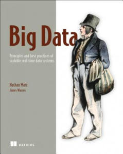 Big Data:Principles and best practices of scalable realtime - 2826634048