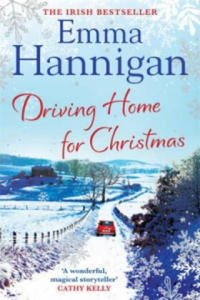 Driving Home for Christmas - 2854201144