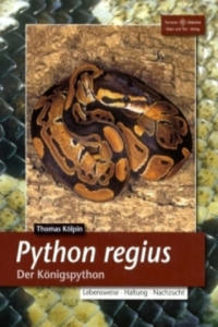 Python regius, Der Königspython - 2826807135