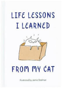 Life Lessons I Learned from my Cat - 2864714865
