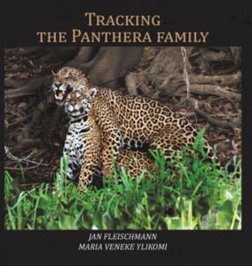 Tracking the Panthera family - 2861905090