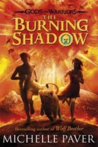 Burning Shadow - 2826899644
