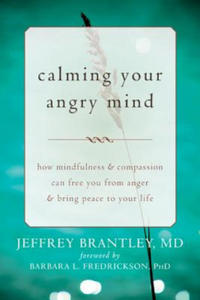 Calming Your Angry Mind - 2852640693