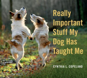 Really Important Stuff My Dog Has Taught Me - 2841664089