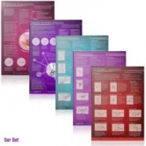 [5er Set] G-Punkt-Massage, Yoni-Massage, Lingam-Massage, Sanfte Klitorismassage, Weibliche Ejakulation, 5 Teile - 2826724360