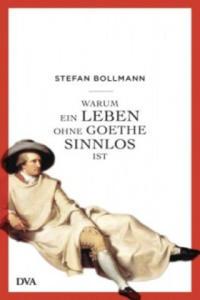Warum ein Leben ohne Goethe sinnlos ist - 2853281259