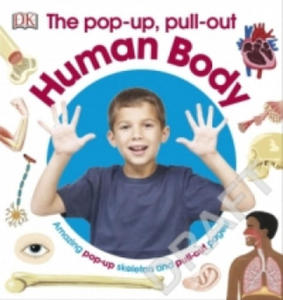 Pop-Up Pull Out Human Body - 2853794374