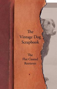 Vintage Dog Scrapbook - The Flat Coated Retriever - 2826800300