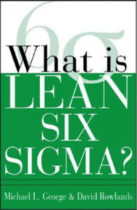 What is Lean Six Sigma - 2826822581