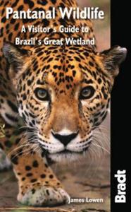 Pantanal Wildlife - 2826644094