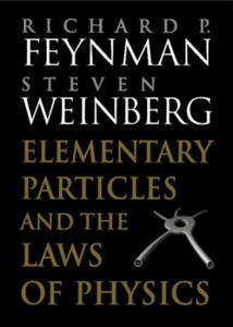Elementary Particles and the Laws of Physics - 2852493943