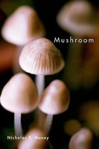 Mushroom - 2844161072