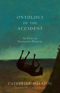 Ontology of the Accident - 2854281757