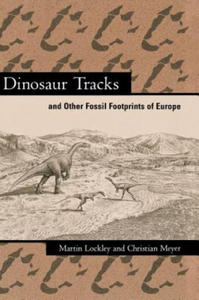 Dinosaur Tracks and Other Fossil Footprints of Europe - 2826918649