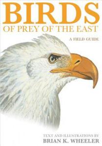 Birds of Prey of the East - 2879053623