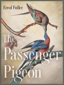 Passenger Pigeon - 2826628195