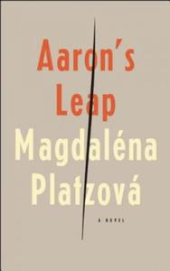 Aaron's Leap - 2826949090