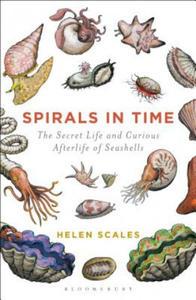 Spirals in Time - 2845290067