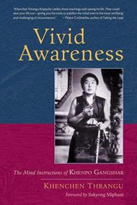 Vivid Awareness - 2862293421
