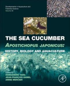 Sea Cucumber Apostichopus Japonicus - 2846347480