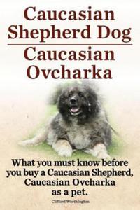 Caucasian Shepherd Dog. Caucasian Ovcharka. What You Must Know Before You Buy a Caucasian Shepherd Dog, Caucasian Ovcharka as a Pet. - 2878157043