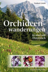 Orchideenwanderungen in Österreich - 2840794176