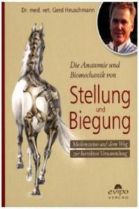 Die Anatomie und Biomechanik von Stellung und Biegung - 2826946387