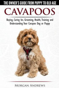 Cavapoos - The Owner's Guide from Puppy to Old Age - Buying, Caring For, Grooming, Health, Training and Understanding Your Cavapoo Dog or Puppy - 2836096742