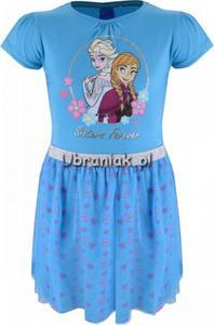 47d8262101 Sukienka Kraina Lodu niebieska z tiulem Kraina Lodu Frozen