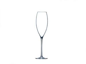 """Kieliszki do szampana """"Flamingo"""" 260 ml Rona - 2825211939"""