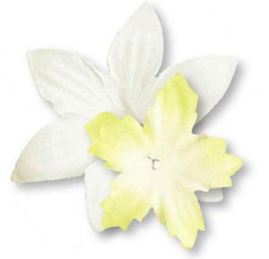 Papierowe kwiatki Heyda zółto/białe x80