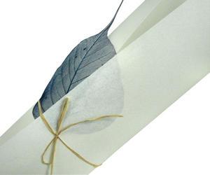 Pergamenata A4 110g Bianco x10