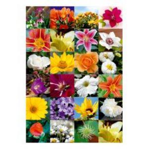 Naklejki HERMA Decor 3077 kwiaty x1
