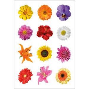 Naklejki HERMA Decor 3309 kwiaty x1