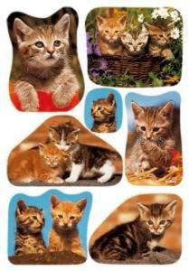Naklejki HERMA Decor 3527 kotki małe, kociątka x1