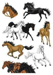 Naklejki HERMA Magic 3259 konie galopujące x1