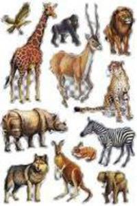 Naklejki HERMA Magic 3649 zwierzęta z ZOO x1