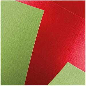 Karton ozdobny A4 220g Holland zielony x20