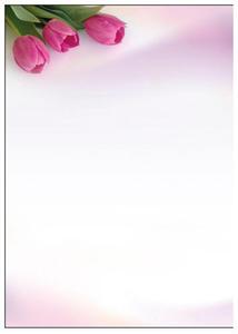 Arkusz barwny A4 100 g/m2 Fanfan x50