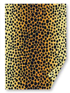 Karton B2 300g Heyda Safari Gepard x1