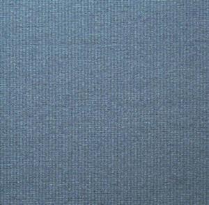 Ingres A4 90g azzurro x10